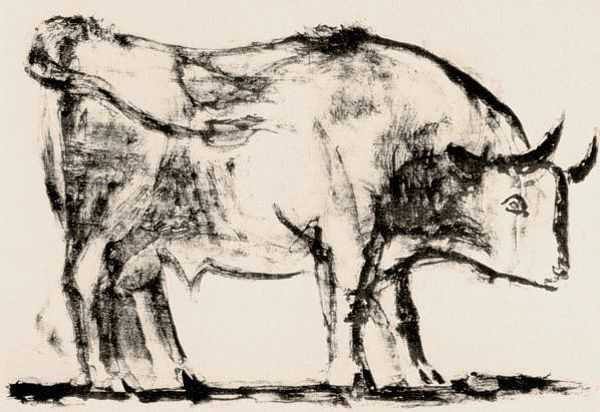 Le Taureau (tentang Picasso dan Bantengnya) 2 picasso,lukisan sketsa,lukisan banteng,contoh karya picasso,lukisan picasso dan maknanya