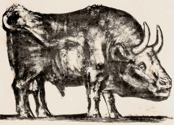 Le Taureau (tentang Picasso dan Bantengnya) 4 picasso