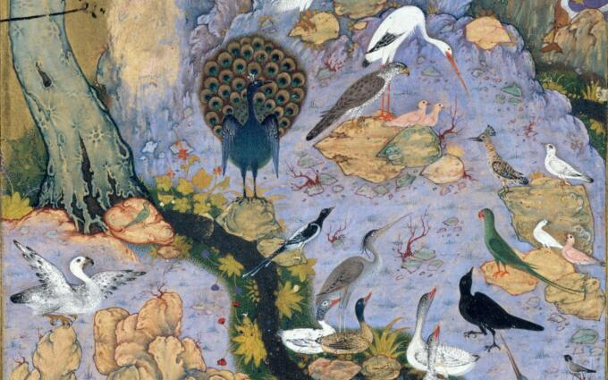 The Conference of the Birds, Illustration, MET